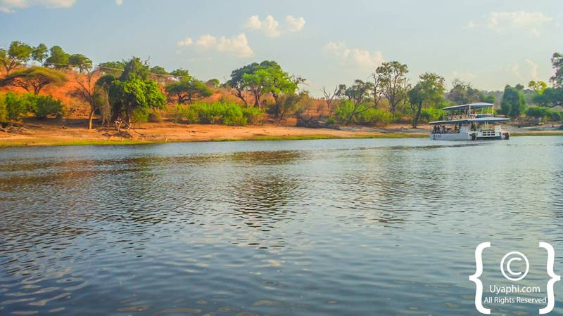 Chobe River Pictures Botswana Photo Gallery - Chobe river