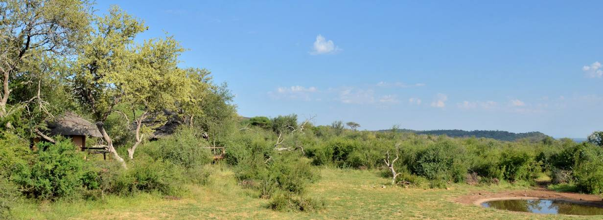 Motswiri Safari Lodge