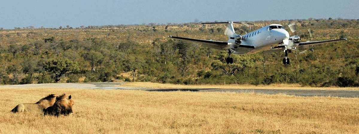 Kruger Fly-In Safaris
