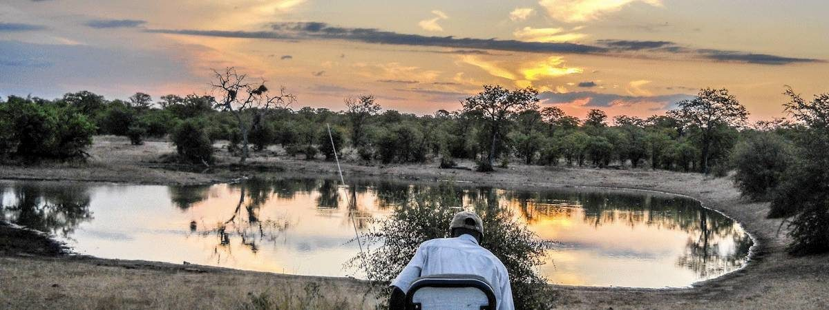 Kruger Self Drive Safaris