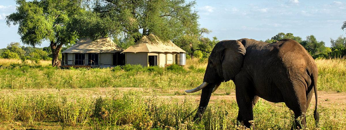 Remote Lodges In Zimbabwe