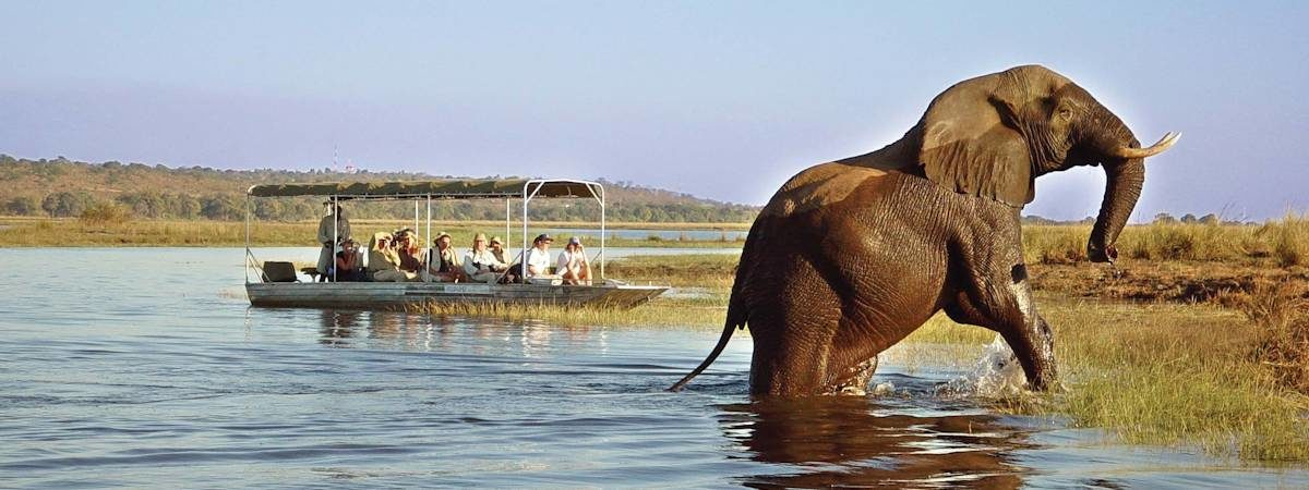 Botswana Untamed Safari