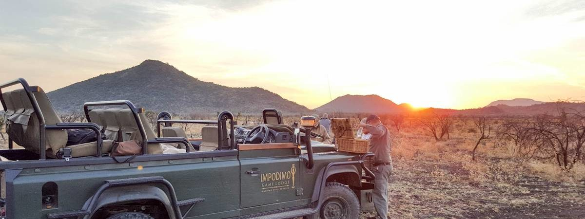 Safari In Madikwe Photo Gallery