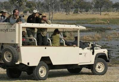 Livingstone Safari