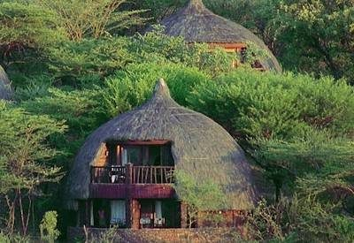 Treasures of Tanzania